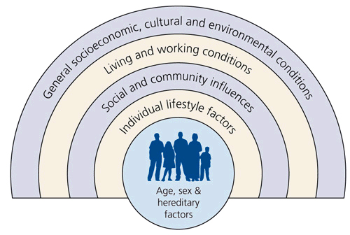 the effects of diversity on the social structure of a university In the social sciences, social structure is the patterned social arrangements in society that are both emergent from and determinant of the actions of the individuals (article: social structure) oxford university press crothers, charles (1996), social structure, london: routledge.